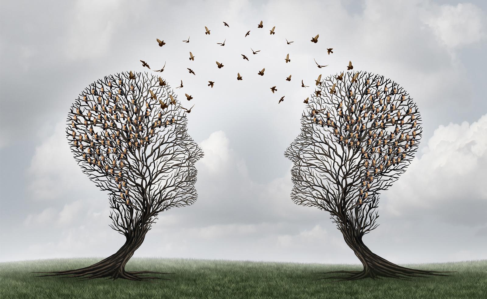 Un buen mentor te transfiere su conocimiento y experiencia.